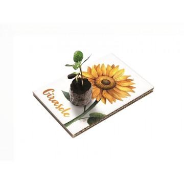 Eco Cartolina - Girasole