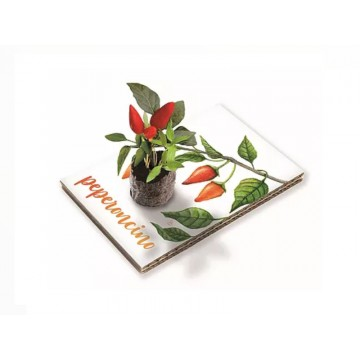 Eco Cartolina - Peperoncino