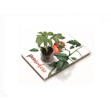 Eco Cartolina - Pomodoro
